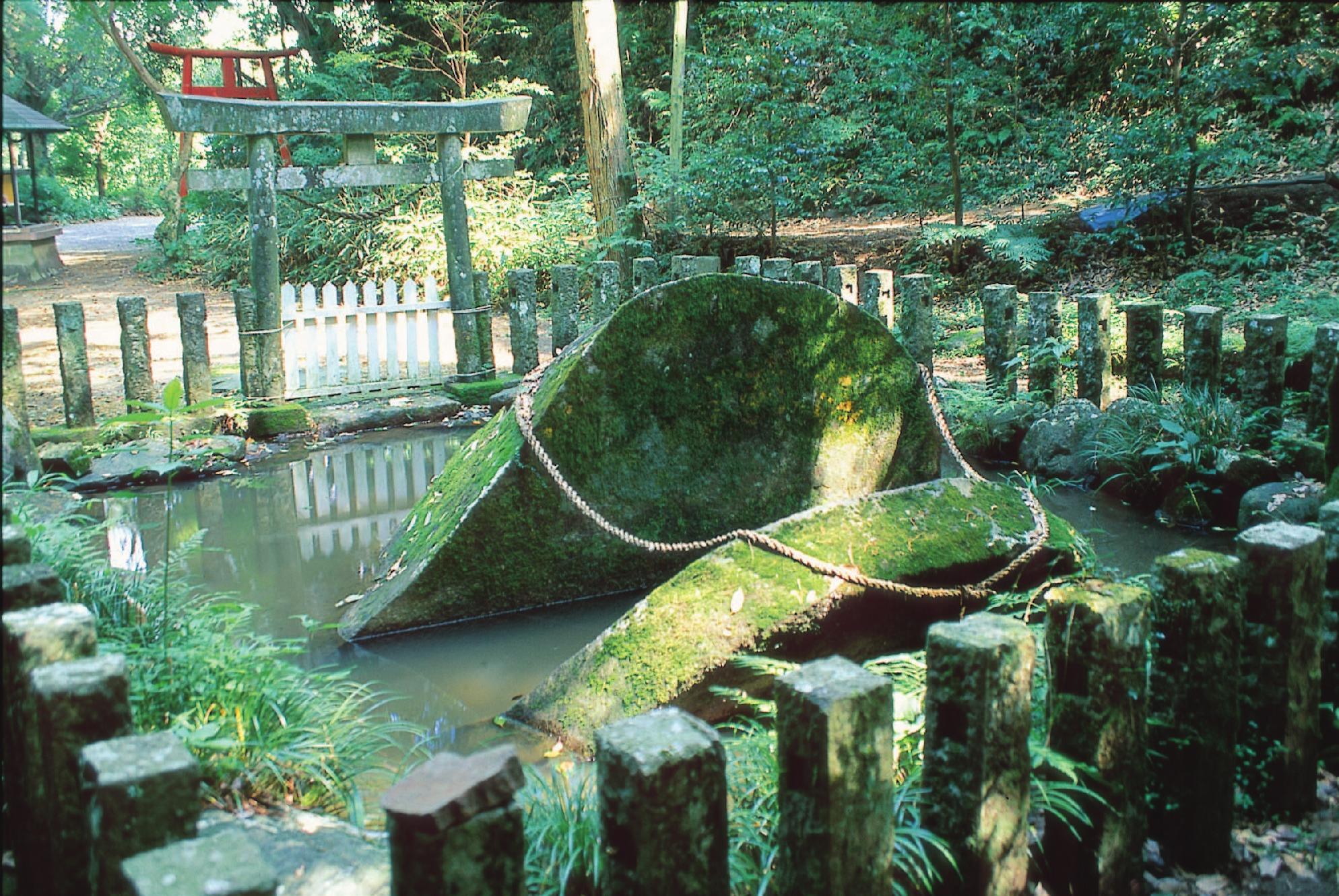 東霧島(神石)